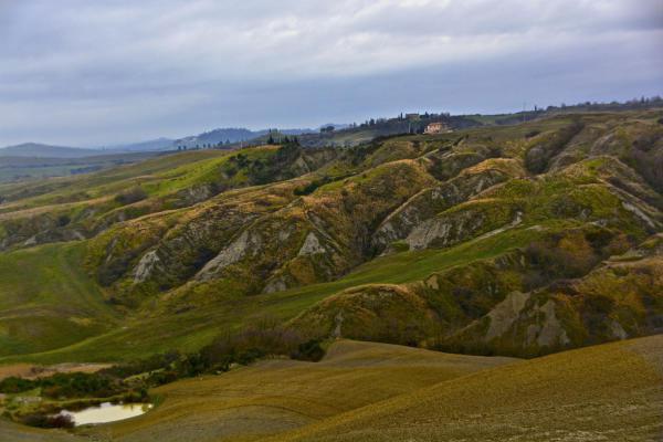 Campo Muri