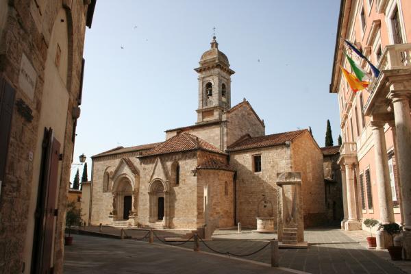 San Quirico d'Orcia è un comune della provincia di Siena, di probabile origine etrusca. L'importanza strategica di questo paesino aumentò gradatamente nell'alto Medioevo per la sua particolare posizione geografica e soprattutto per l'influenza esercitata dalla Via Francigena che lo attraversava. Al suo territorio appartengono anche Bagno Vignoni, noto borgo termale, e Vignoni. Sa Nella frazione Vignoni è presente un antico castello, il Castello di Vignoni, quasi disabitato, già residenza dei Salimbeni nel XII secolo, e successivamente degli Amerighi dal XIV secolo. Ha una torre medioevale mozzata, una chiesa romanica ripristinata (all'interno era conservato un crocifisso del Giambologna, ora custodita presso il museo di Montalcino, e un fonte battesimale del secolo XV, ora presso la Collegiata di San Quirico) e, di fianco alla chiesa, l'impianto immobiliare (riedificato nei primi anni novanta) del quattrocentesco Palazzo degli Amerighi, in cui si ordì la congiura contro gli Spagnoli oppressori di Siena (1555-1559). San Quirico ha inoltre alcune chiese rilevanti dal punto di vista storico-artistico: oltre alla già citata Collegiata di San Quirico (più precisamente Collegiata dei Santi Quirico e Giulitta) e alla Chiesa romanica di San Biagio a Vignoni, vanno segnalate la Chiesa di San Giovanni Battista a Bagno Vignoni, la Chiesa e la Cappella della Madonna di Vitaleta, la Chiesa di Santa Maria Assunta e l'Oratorio della Misericordia. Nel Medioevo la località si trovava sulla direttrice della via Francigena. Sigerico, arcivescovo di Canterbury, nel suo itinerario, compiuto tra il 990 e il 994, cita San Quirico come XII submansio e la definisce Sce Quiric.
